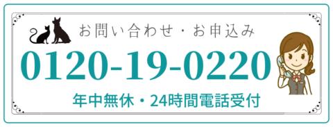 0120190220の電話番号