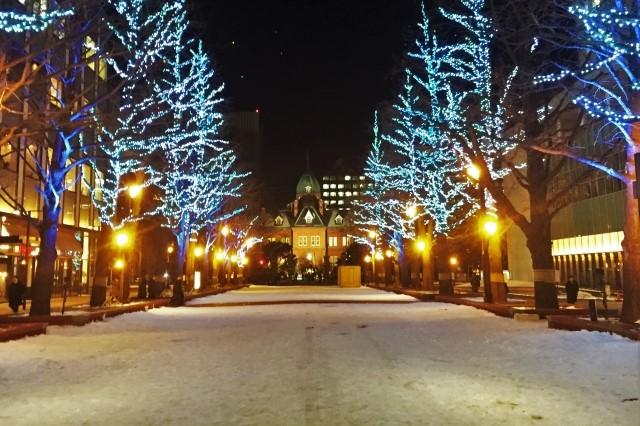 札幌市北海道庁前のホワイトイルミネーション