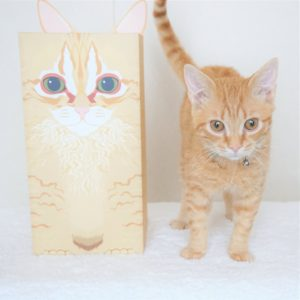 ペットの猫とその猫が描かれたそっくりなお骨カバー