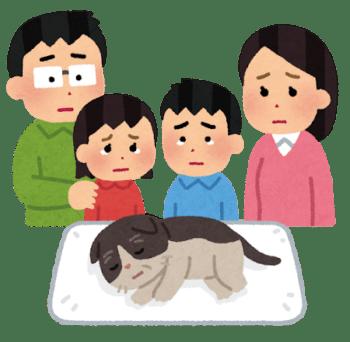 年老いた猫が死んで泣いている家族