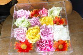 ケースに収められたペット用のお別れ生花