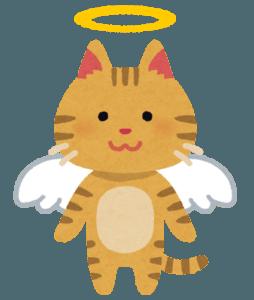 天使の輪と翼が付いた猫