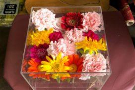 アクリルケースに収められている、ガーベラやカーネーションなどの花々。