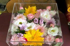 アクリルケースに収められている、白いトルコキキョウや黄色のガーベラなどの花々。